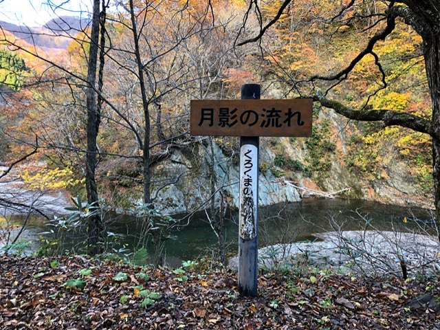 f:id:oyasumiameko:20191116140150j:plain