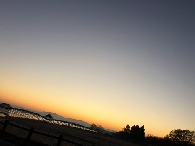 f:id:oyasumiameko:20191124201536j:plain