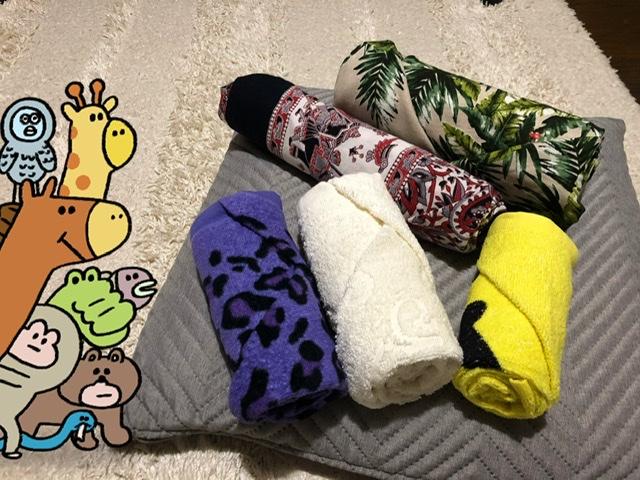 f:id:oyasumiameko:20191216205945j:plain
