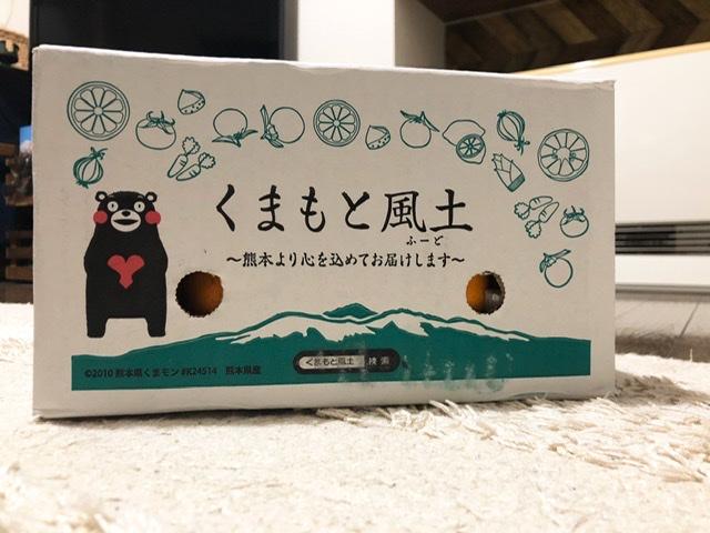 f:id:oyasumiameko:20191226202904j:plain