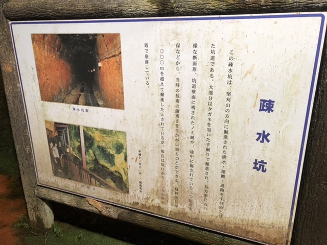f:id:oyasumiameko:20200110222742j:plain