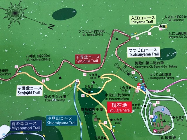 f:id:oyasumiameko:20200209230922j:plain