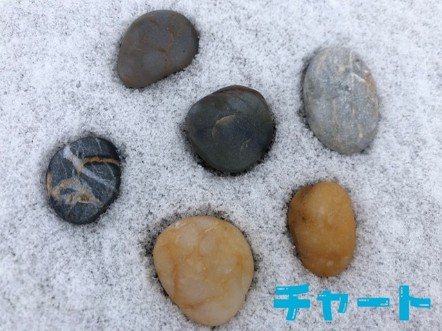 f:id:oyasumiameko:20200211104245j:plain