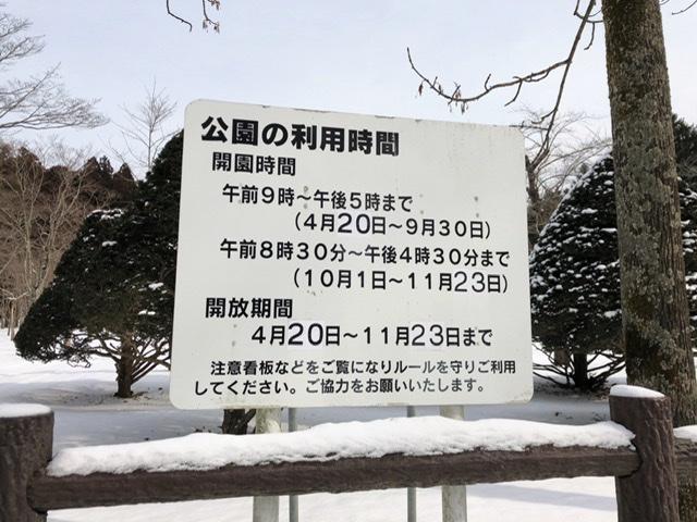 f:id:oyasumiameko:20200211181646j:plain