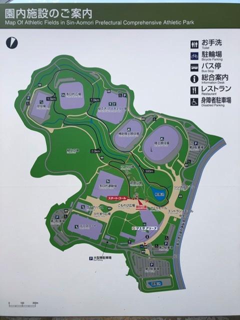 f:id:oyasumiameko:20200603184306j:plain