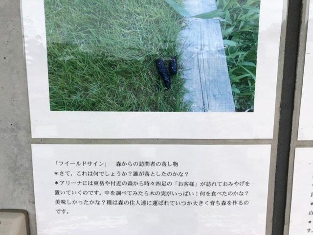 f:id:oyasumiameko:20200603185812j:plain