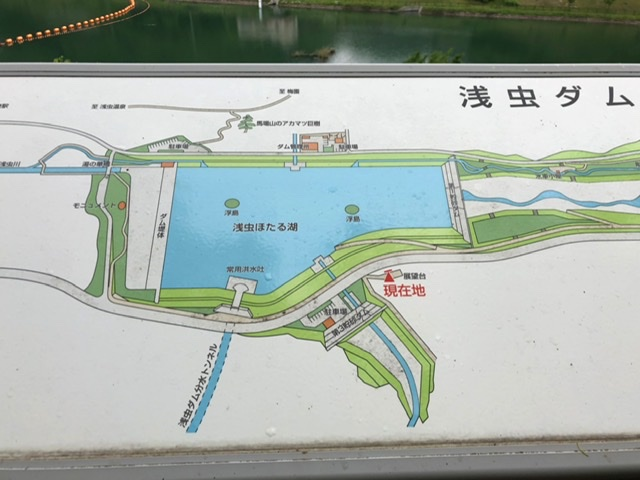 f:id:oyasumiameko:20200604062041j:plain
