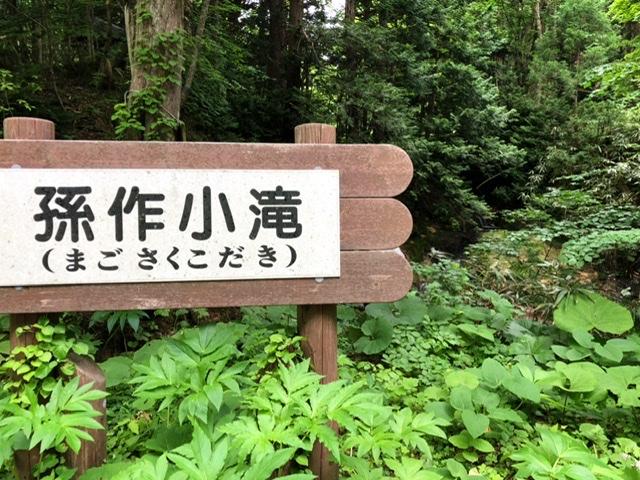 f:id:oyasumiameko:20200621215149j:plain