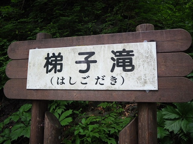 f:id:oyasumiameko:20200621224207j:plain