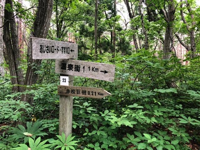 f:id:oyasumiameko:20200624213055j:plain