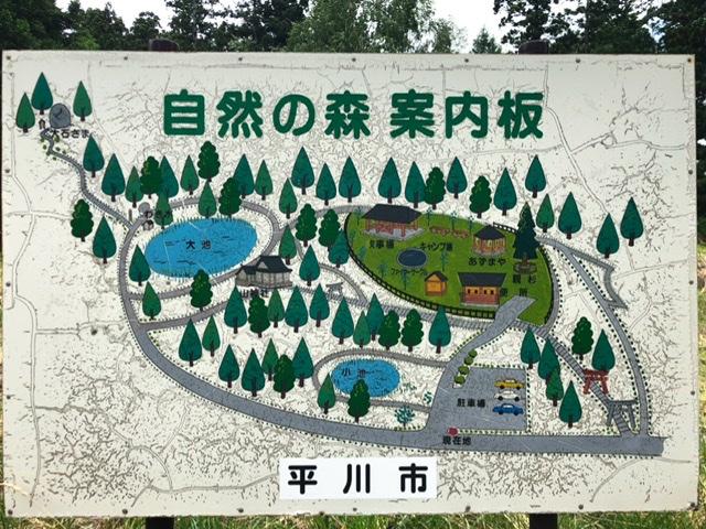 f:id:oyasumiameko:20200625210025j:plain