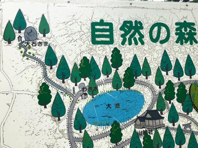 f:id:oyasumiameko:20200625210242j:plain