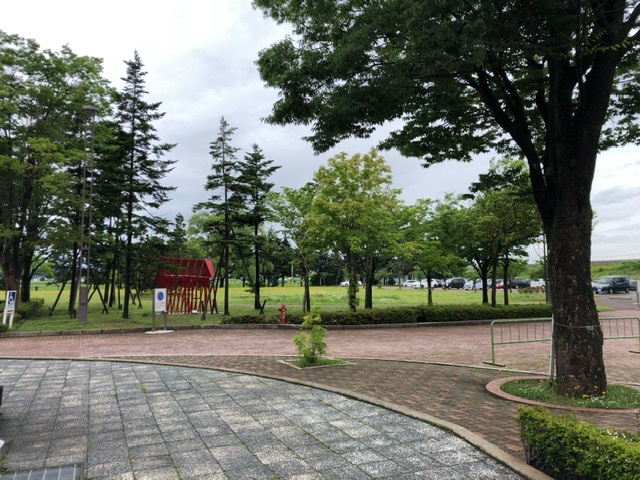 f:id:oyasumiameko:20200702163603j:plain