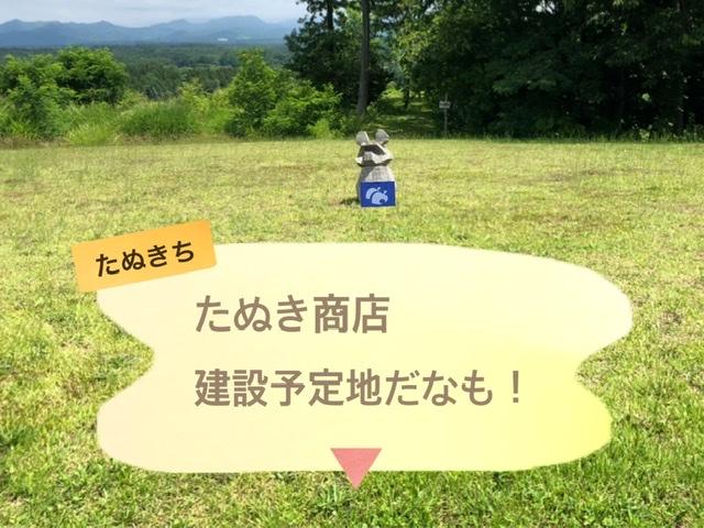 f:id:oyasumiameko:20200716201321j:plain