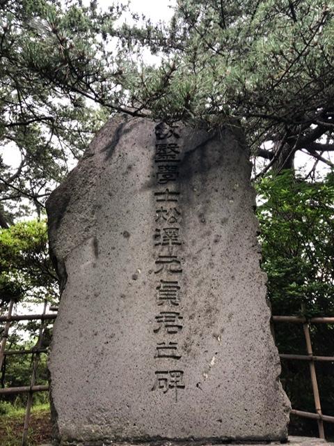 f:id:oyasumiameko:20200731214552j:plain