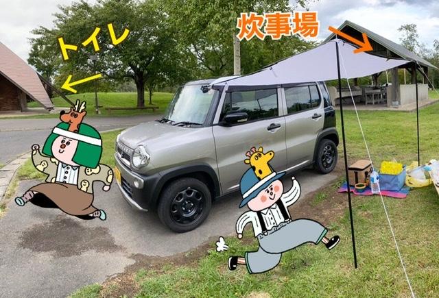 f:id:oyasumiameko:20200918163308j:plain