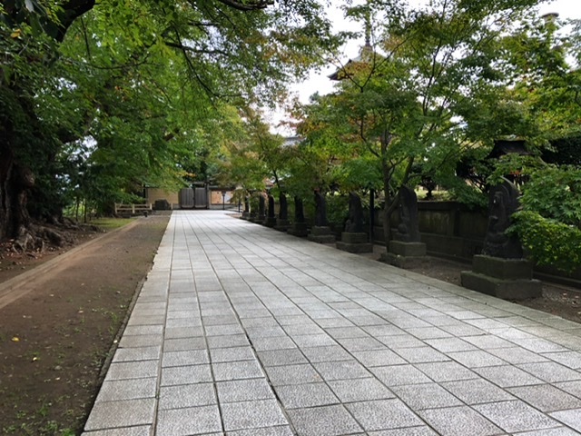 f:id:oyasumiameko:20201012222307j:plain
