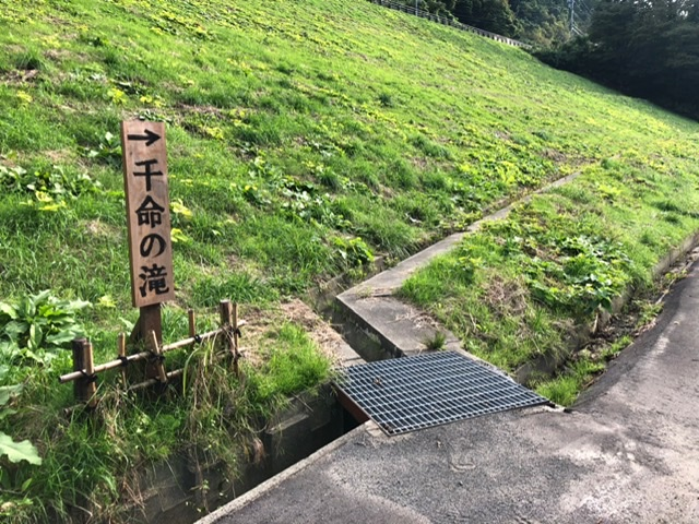 f:id:oyasumiameko:20201015215141j:plain