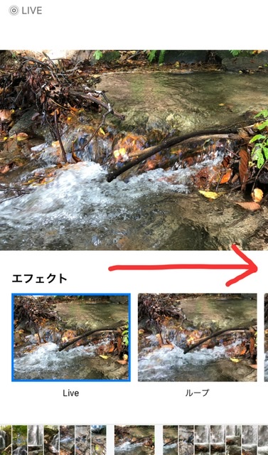 f:id:oyasumiameko:20201022223209j:plain