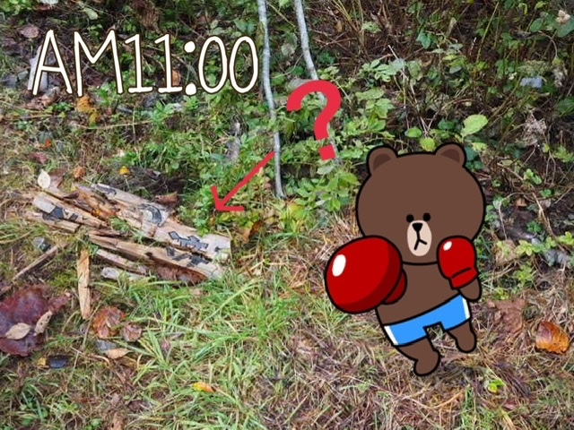 f:id:oyasumiameko:20201023050712j:plain