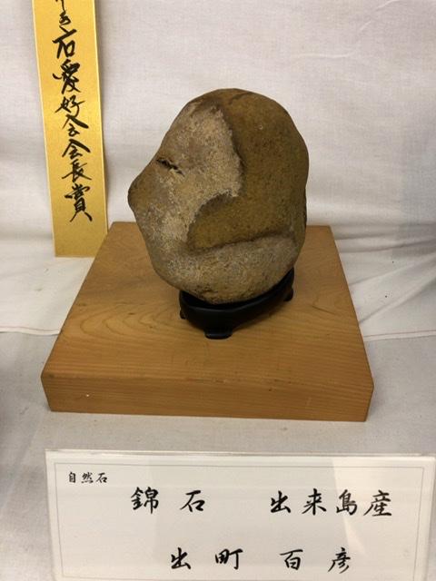 f:id:oyasumiameko:20201024203522j:plain