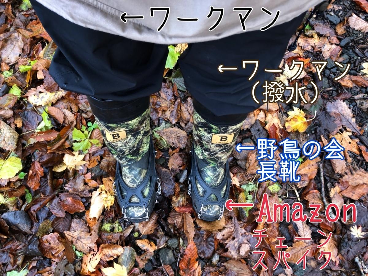 f:id:oyasumiameko:20201109223013j:plain