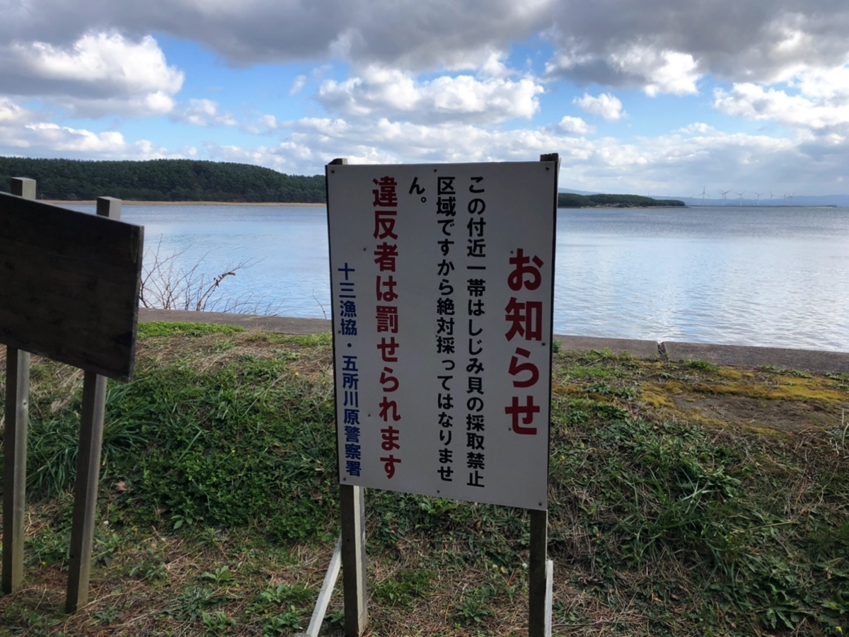 f:id:oyasumiameko:20201127212959j:plain