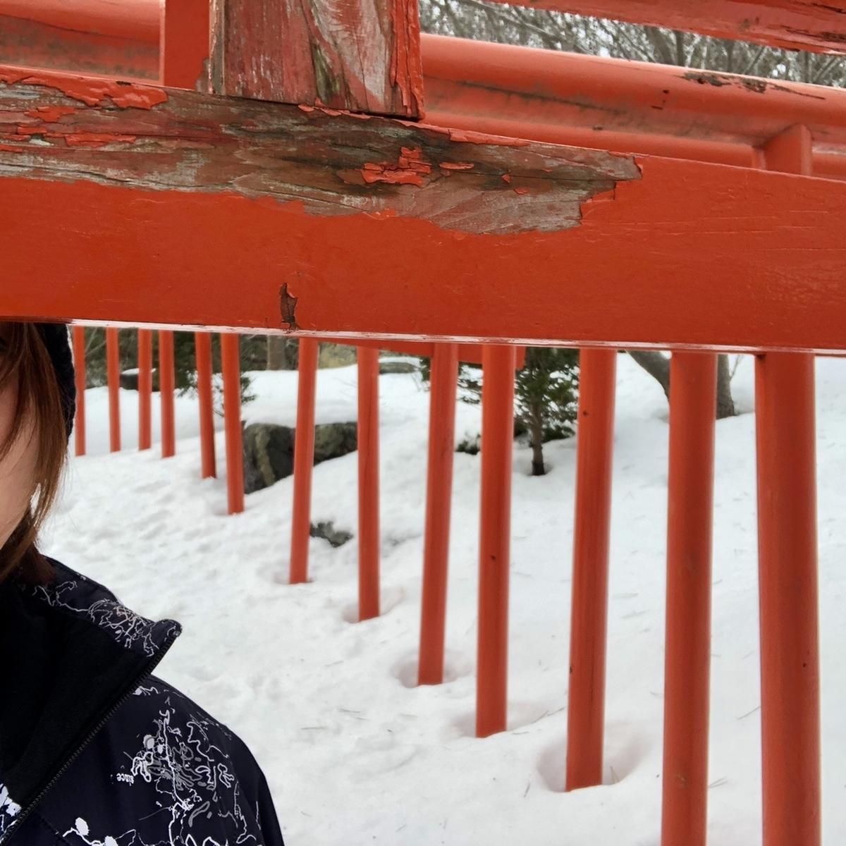 f:id:oyasumiameko:20210122072415j:plain