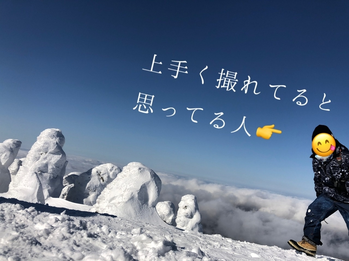 f:id:oyasumiameko:20210202221224j:plain