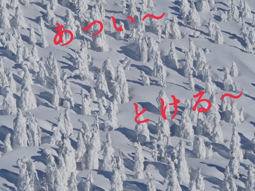 f:id:oyasumiameko:20210204201256j:plain