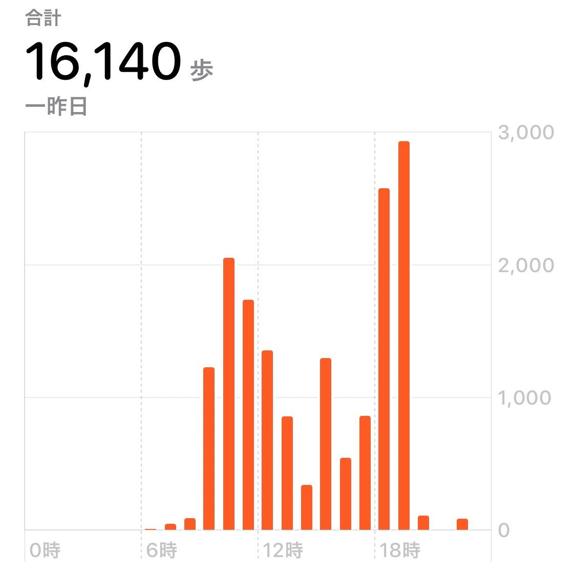 f:id:oyasumiameko:20210225211153j:plain