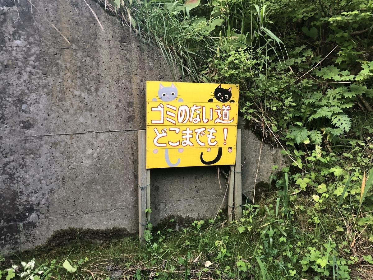 f:id:oyasumiameko:20210704062729j:plain