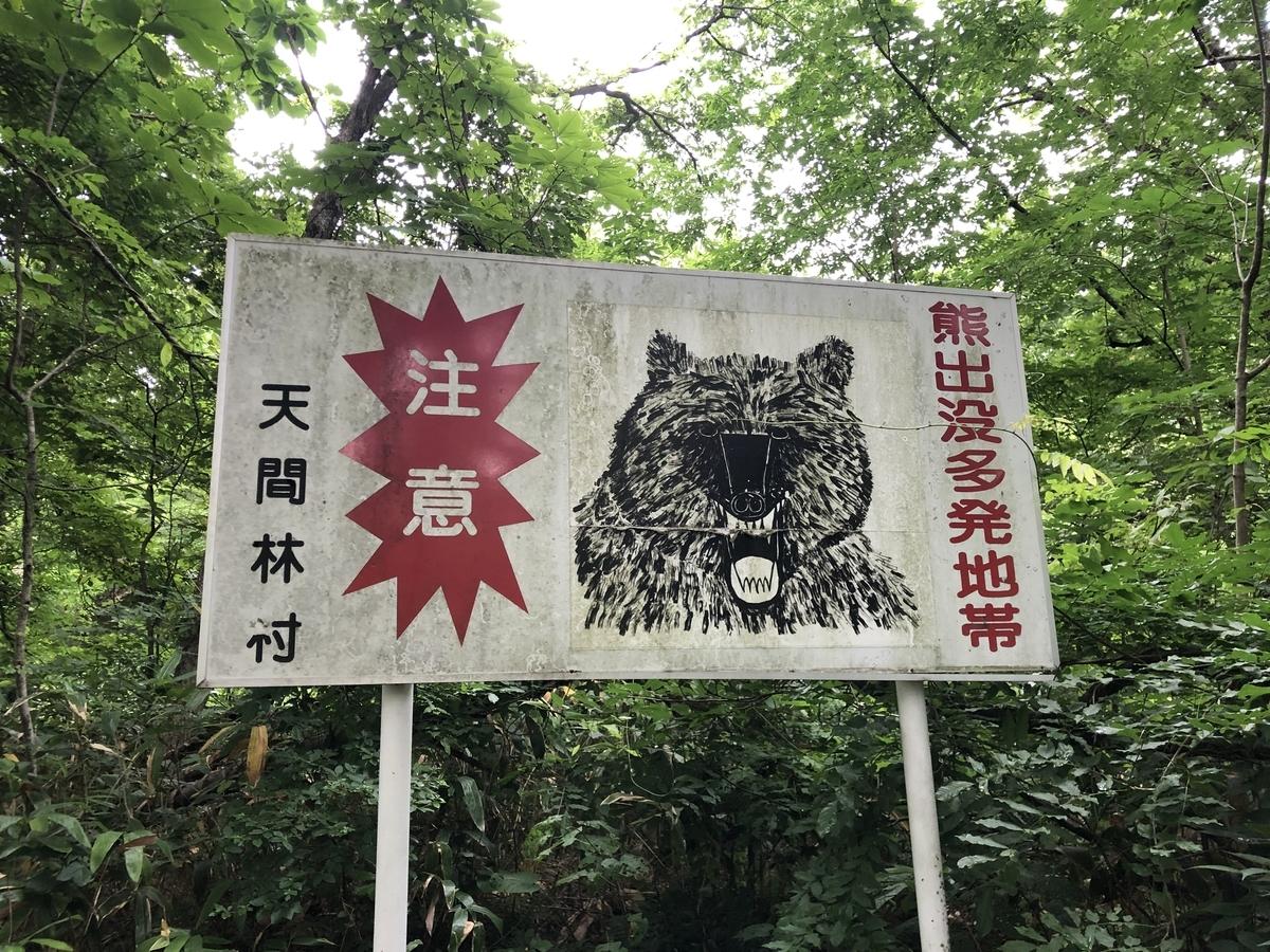 f:id:oyasumiameko:20210730191004j:plain