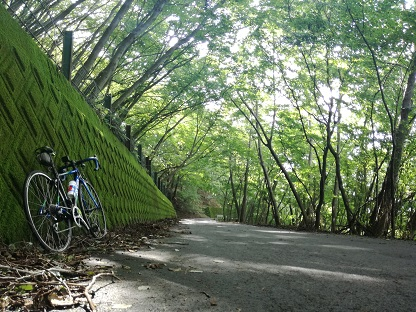 林道や峠道をロードバイクで走る時に心に留めておきたいことの画像