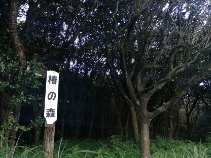 f:id:oyayoko:20180911192557j:plain