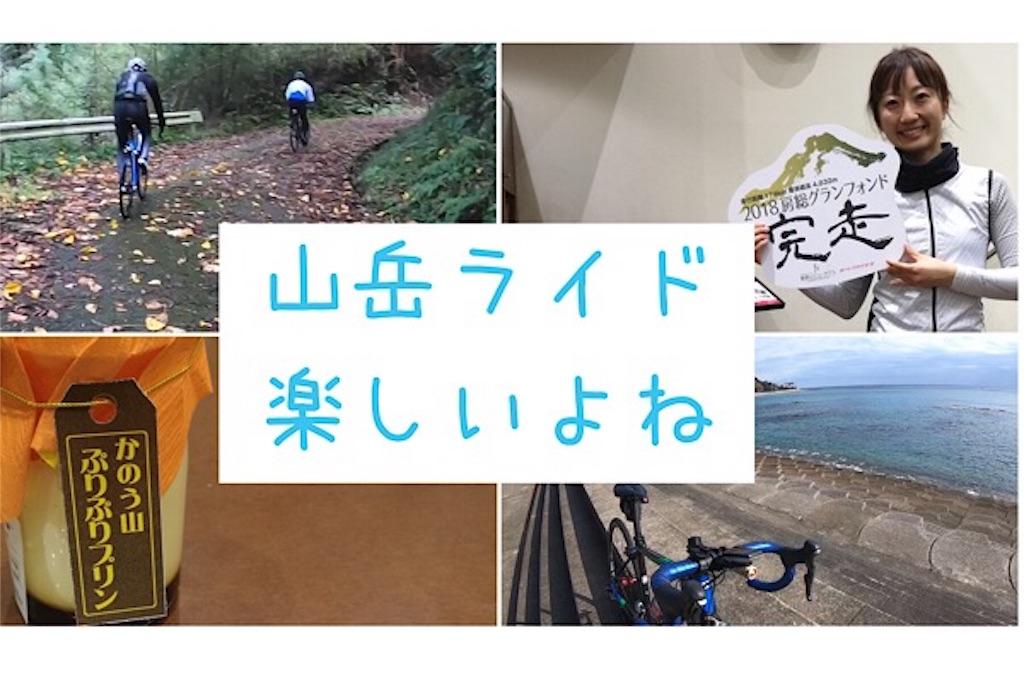 f:id:oyayoko:20181122171205j:image