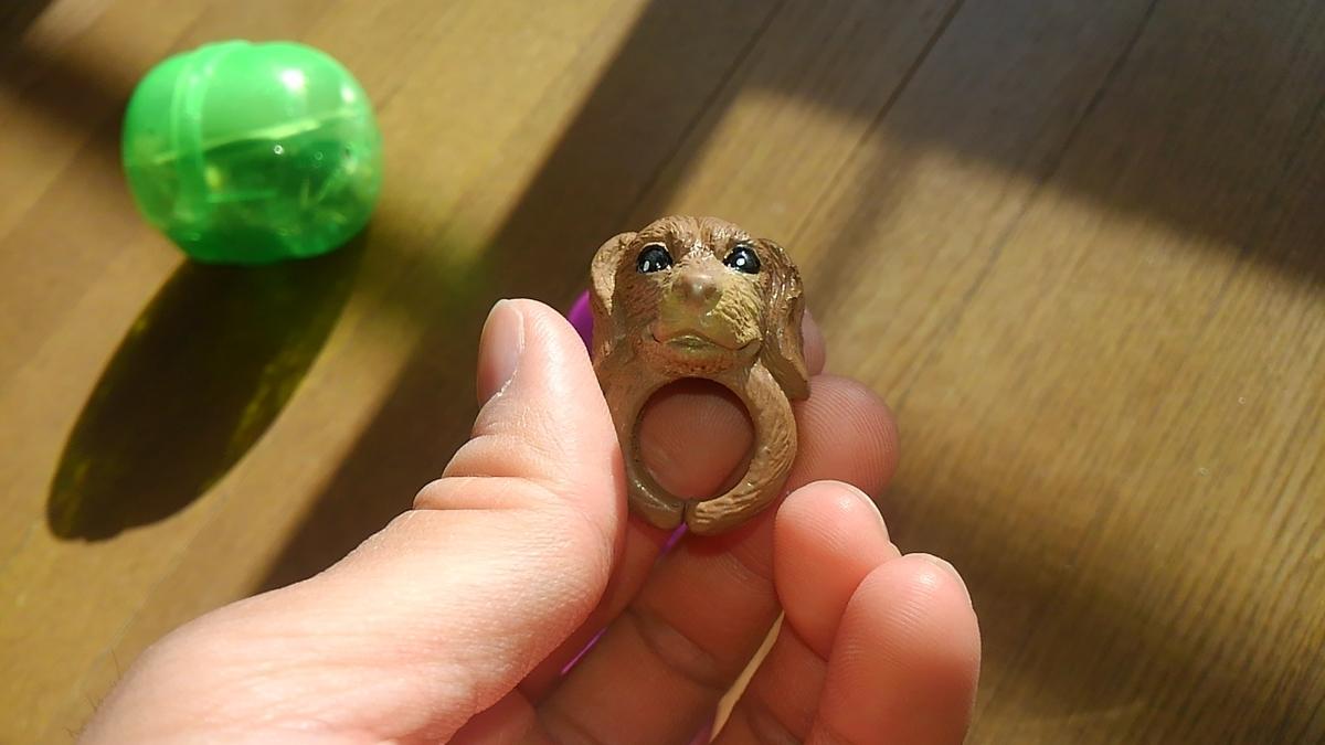 ワンワンリング ガチャポン 犬 指輪