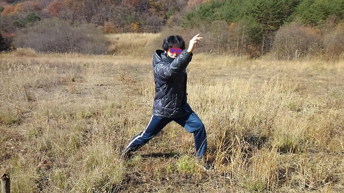 ブログ 日常 生活 旅行 自然 山 紅葉 秋 アウトドア