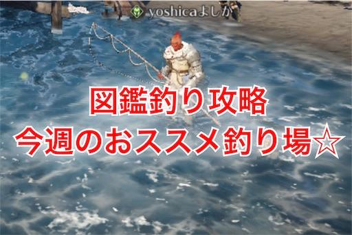 f:id:oyoshica:20190415082224j:image