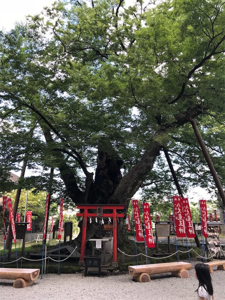 f:id:ozakikumiko:20180822174625j:image