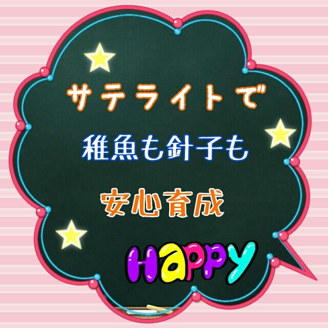 f:id:ozisanzu-papa:20190627210146j:plain