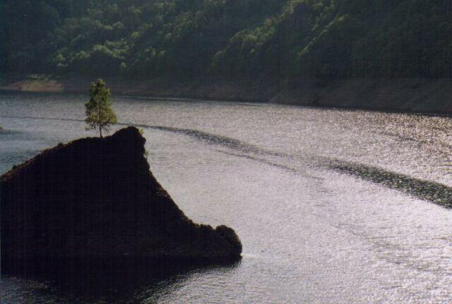 渓流の記憶