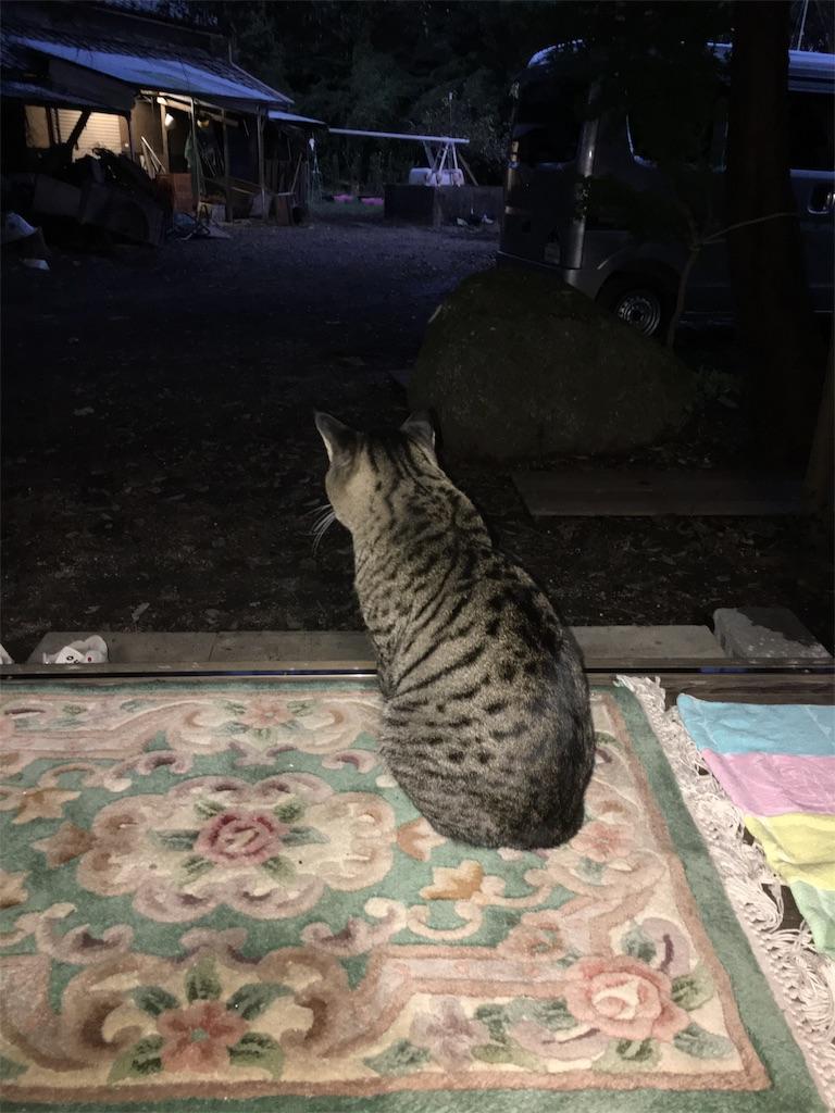 f:id:ozoranashien:20191027223123j:image