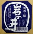 岩の井カップ(千葉県御宿町・岩瀬酒造)