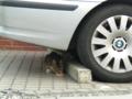 BMWの下で食事中の猫
