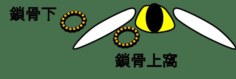f:id:p_kun:20200830221353p:plain