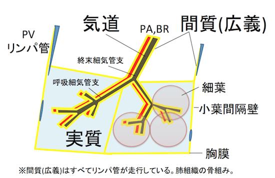 f:id:p_kun:20200903221239p:plain