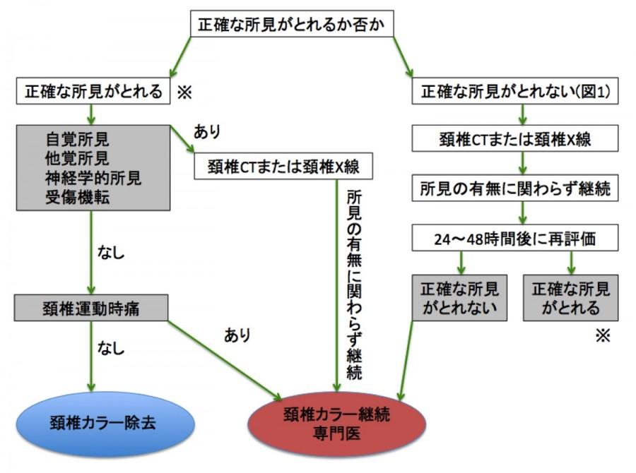 f:id:p_kun:20201104201409j:plain