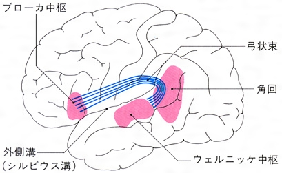 f:id:p_kun:20210427183919j:plain
