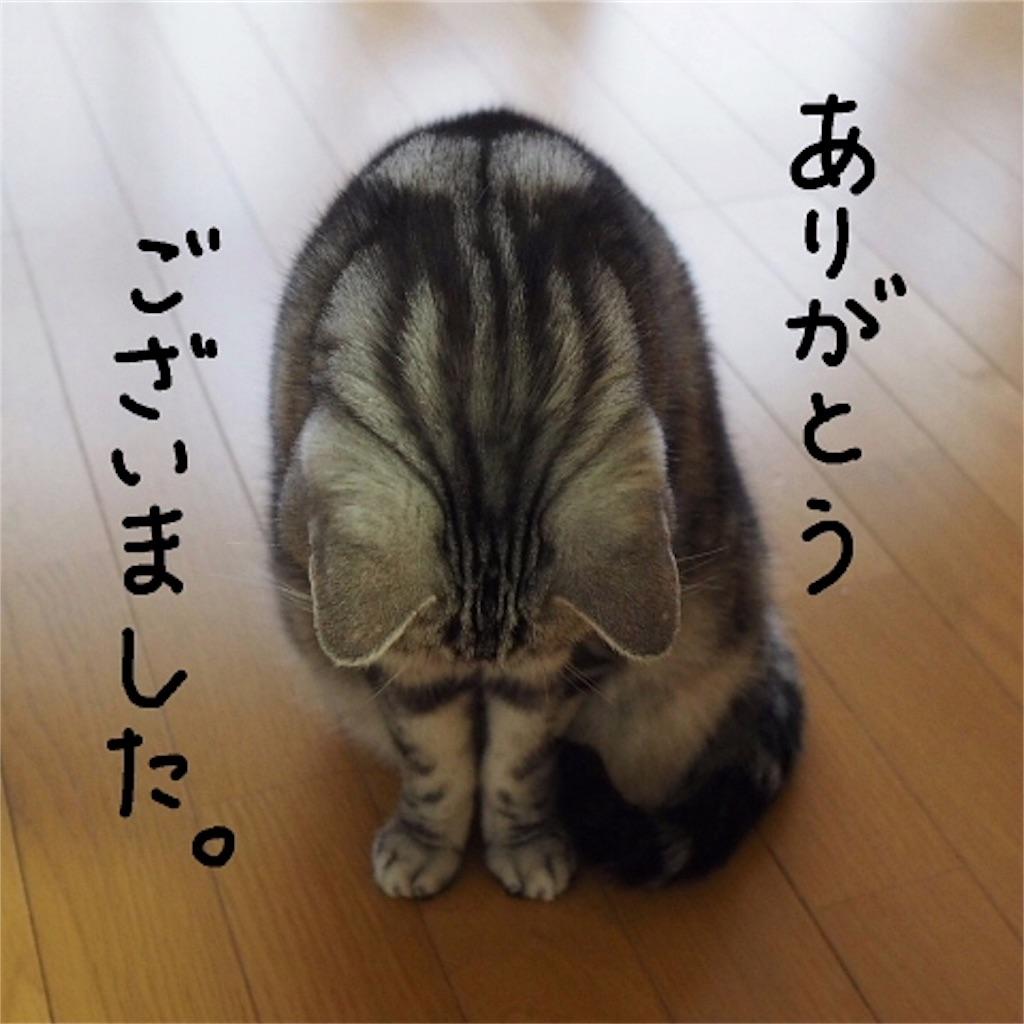 f:id:pa_ko:20161130193515j:image